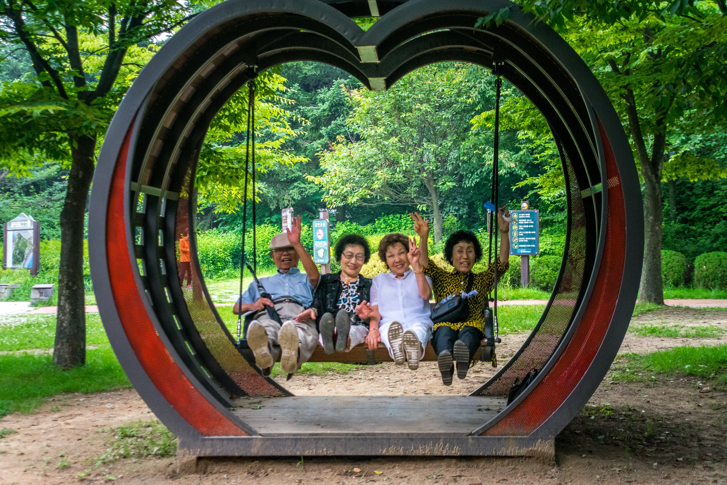 These adorable Korean elders laughing and posing on a swing at the top of the park!