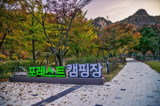Reminiscing of beautiful fall hikes in Korea, and in need of one in our new home. . #korea #wonju #wonjususpensionbridge #forestcampingground #coloradohiking  #getoutdoors