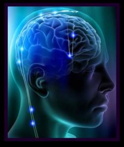 NeuralPath-252x300.png