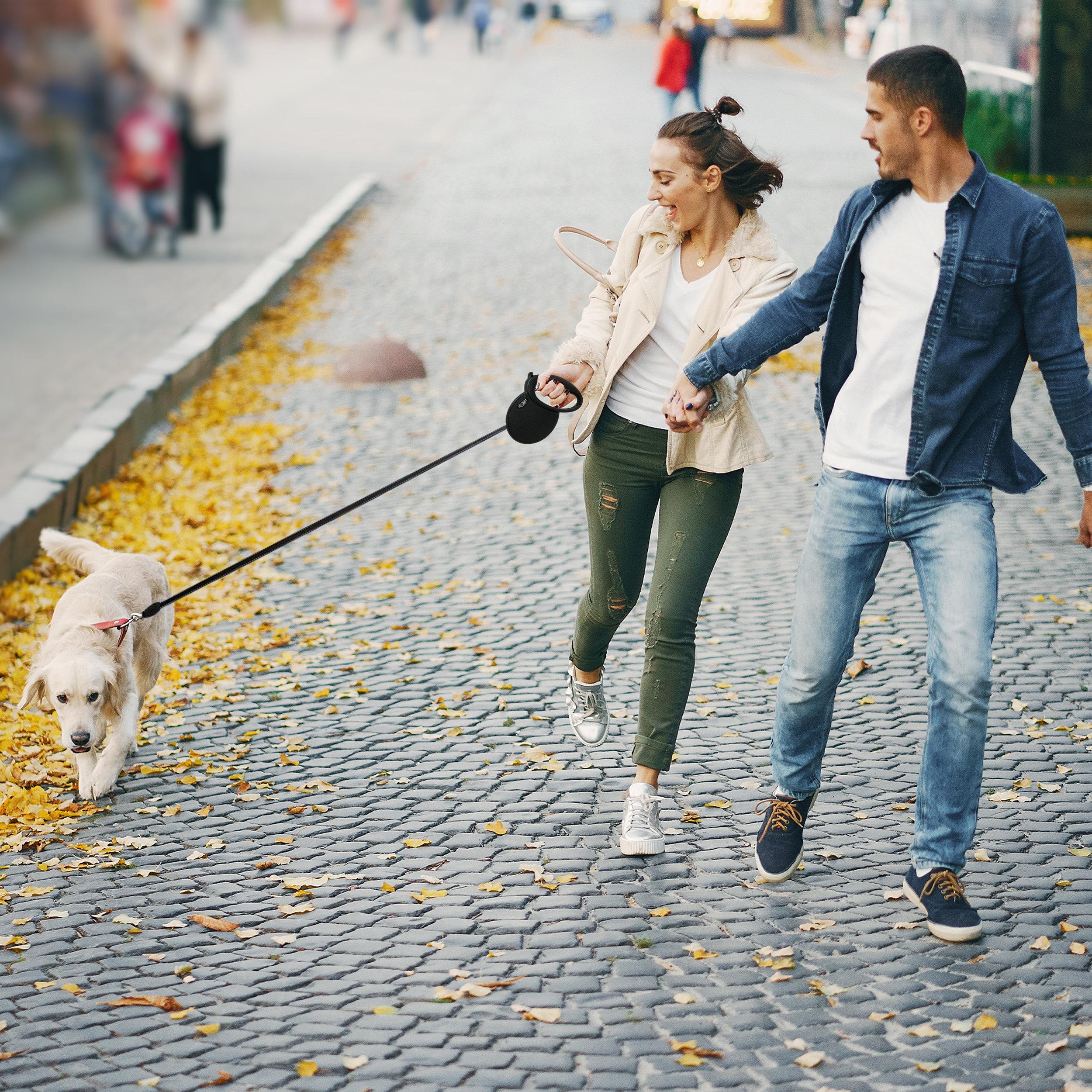 Pet Craft Supply Heavy Duty Durable Retractable Dog Walking Leash