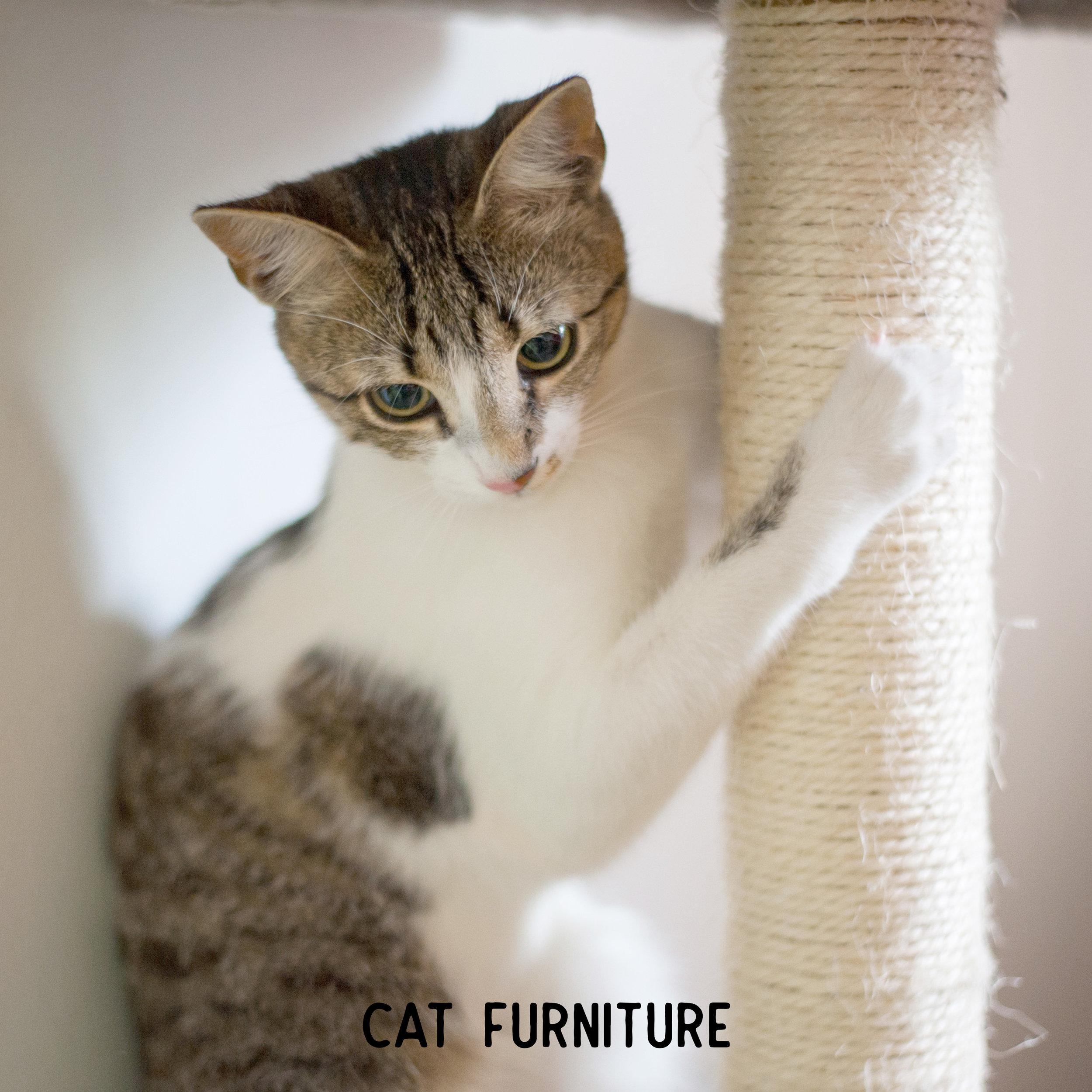Pet Craft Supply Cat Furniture