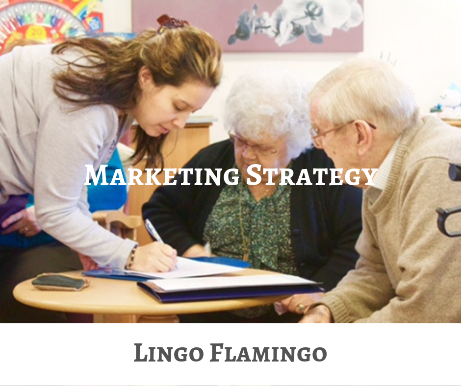 Lingo Flamingo Marketing Strategy CEIS