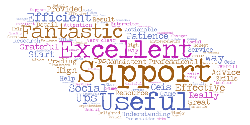 Word Cloud recent client survey
