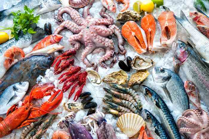 Анализ аллергии на кальмара