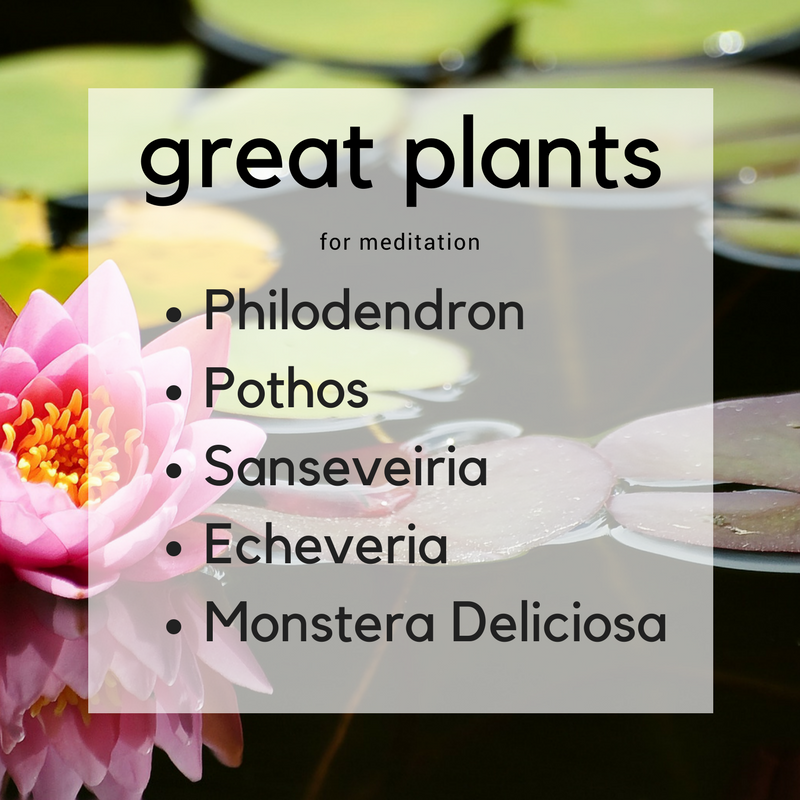 great plants.png