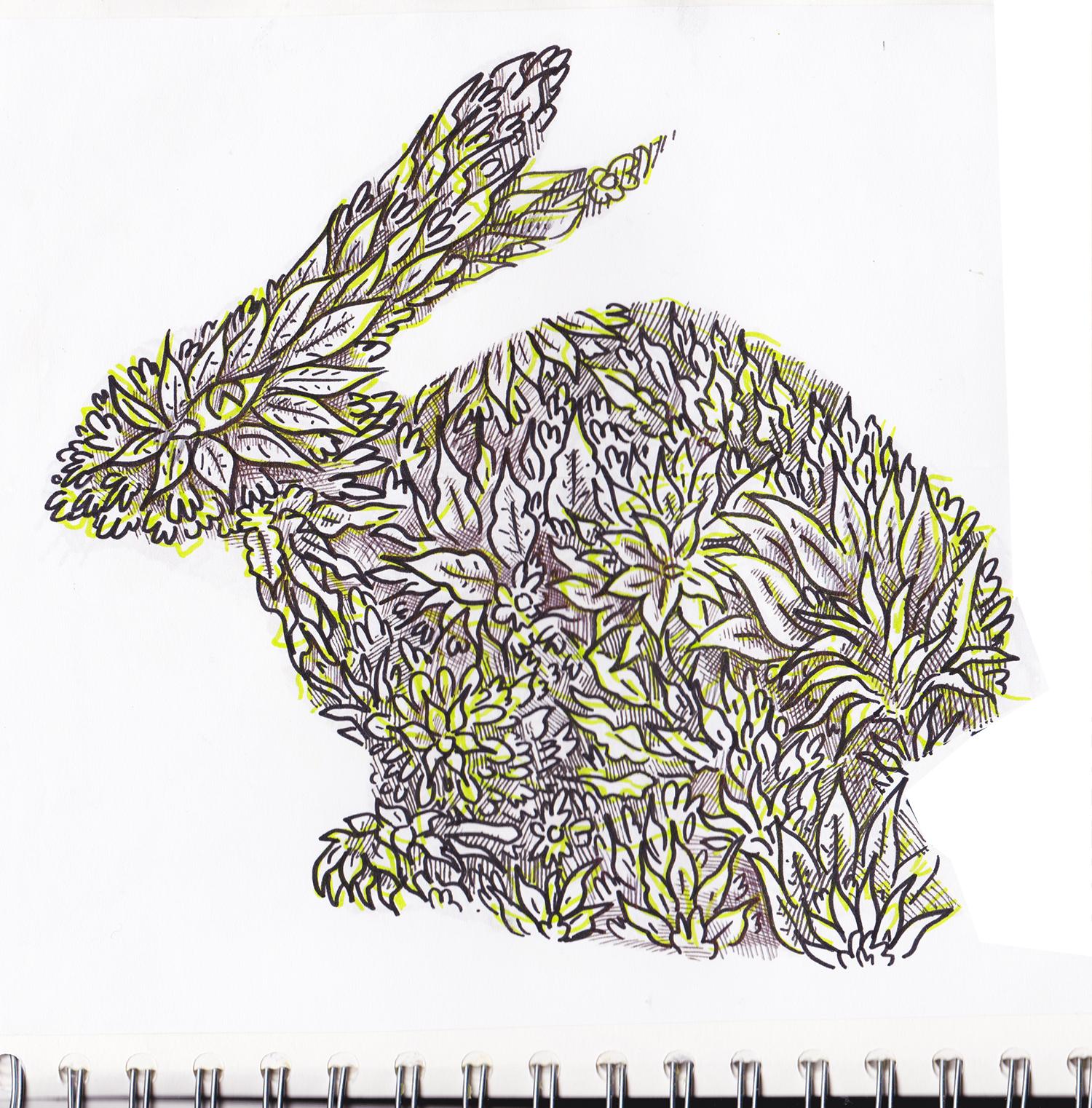 bunny bunny rabbit 2 copy.jpg
