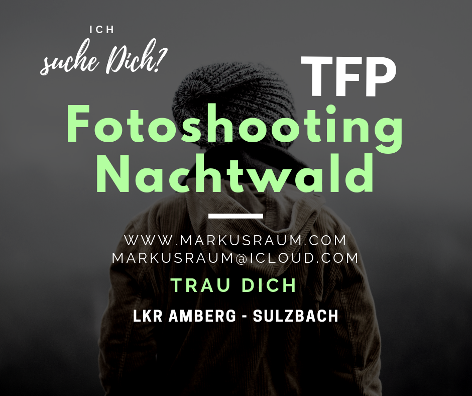Fotoshooting Nachtwald-5.png
