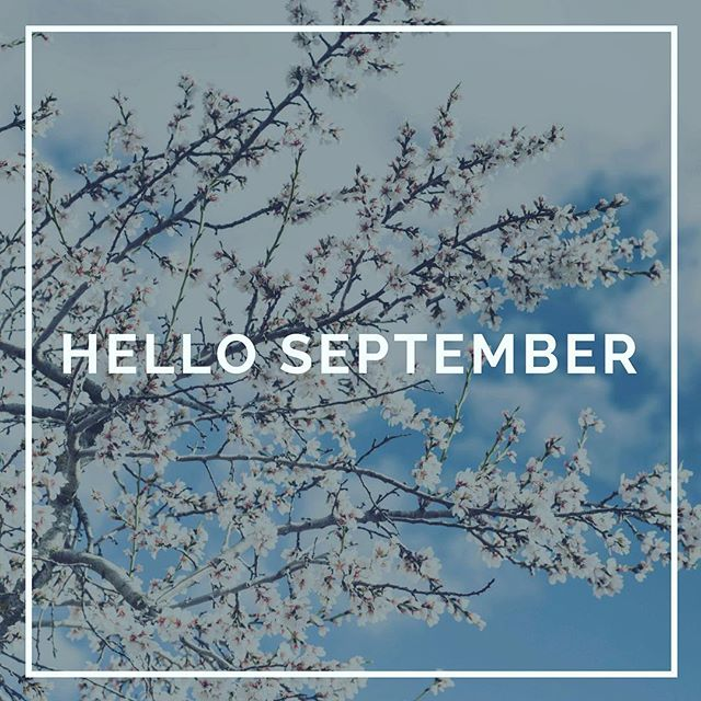 Just 4 months until the end of the year! Re-visit your goals, stay on track, write them down and strategize how to achieve. #endofsummer #goalsetting #health #mentalhealth #education #growth
