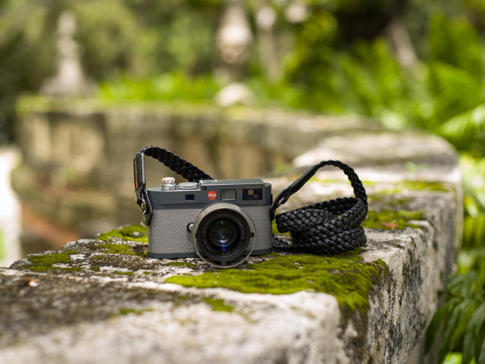 Vi Vante Tiger Vizcaya Leica ME 4.jpg