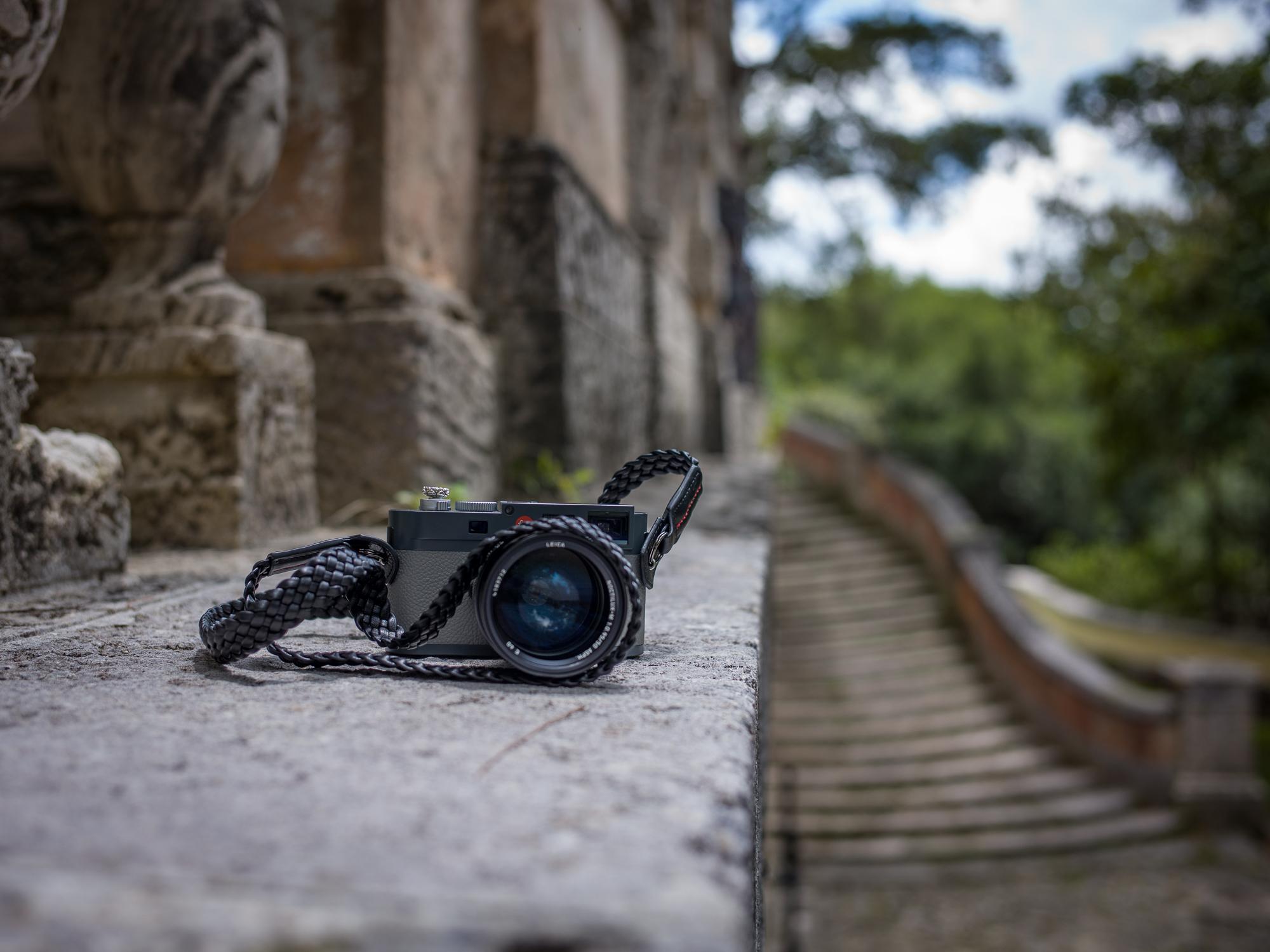 Vi Vante Tiger Vizcaya Leica ME 5.jpg