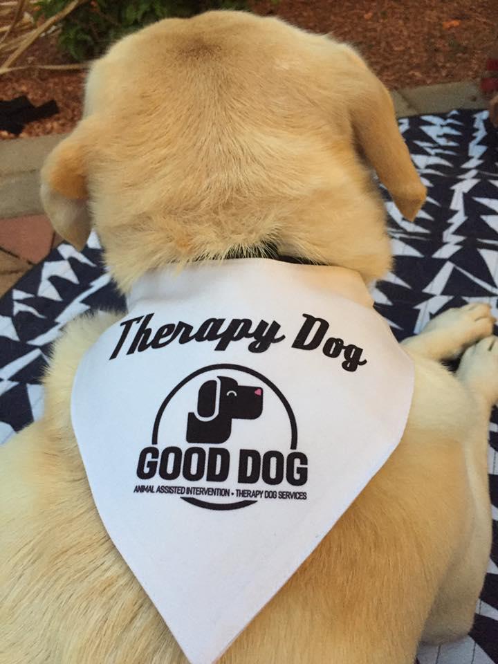 Good Dog_Roxy back.jpg