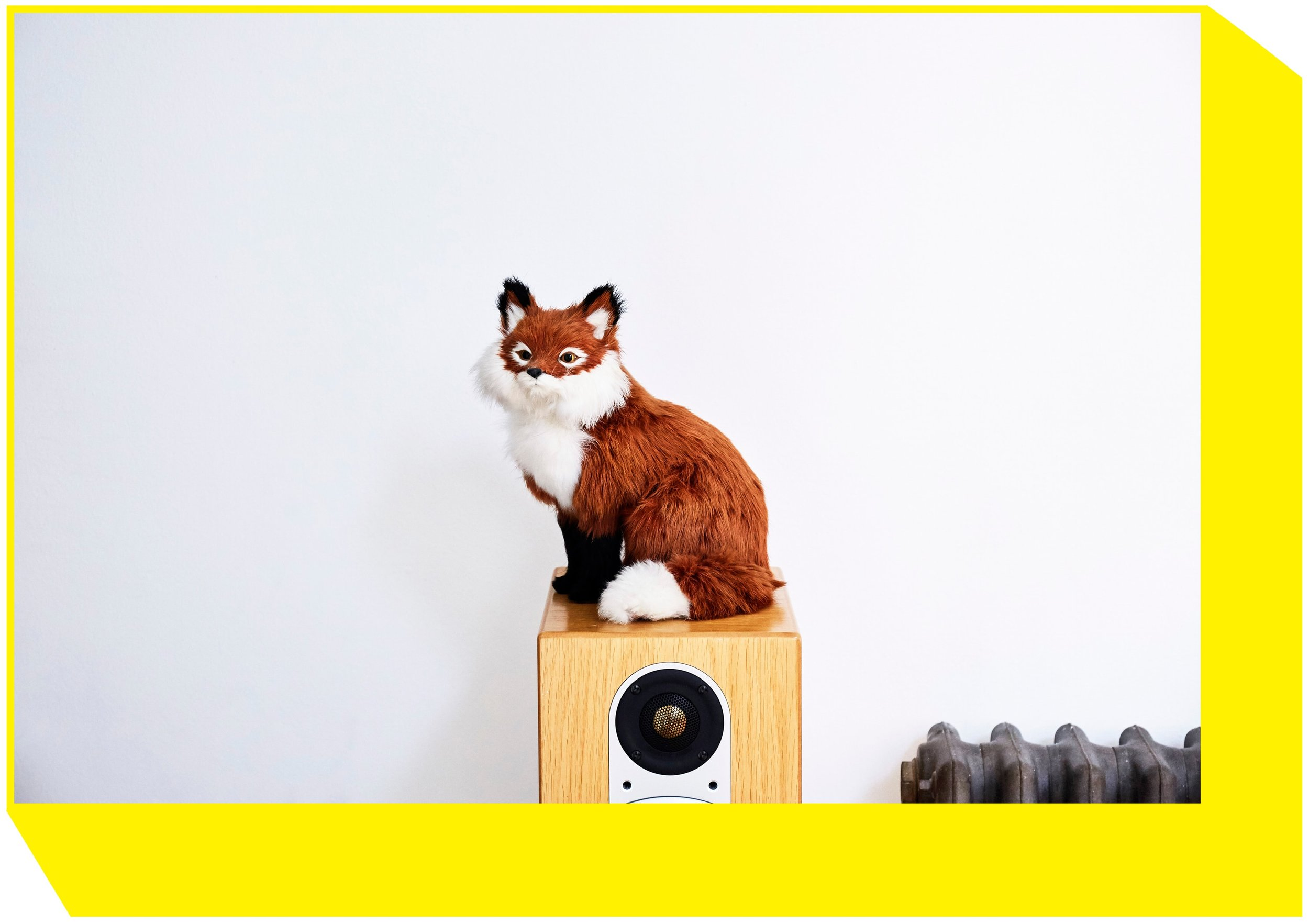 abstractstylist-choosing-to-fox.jpg