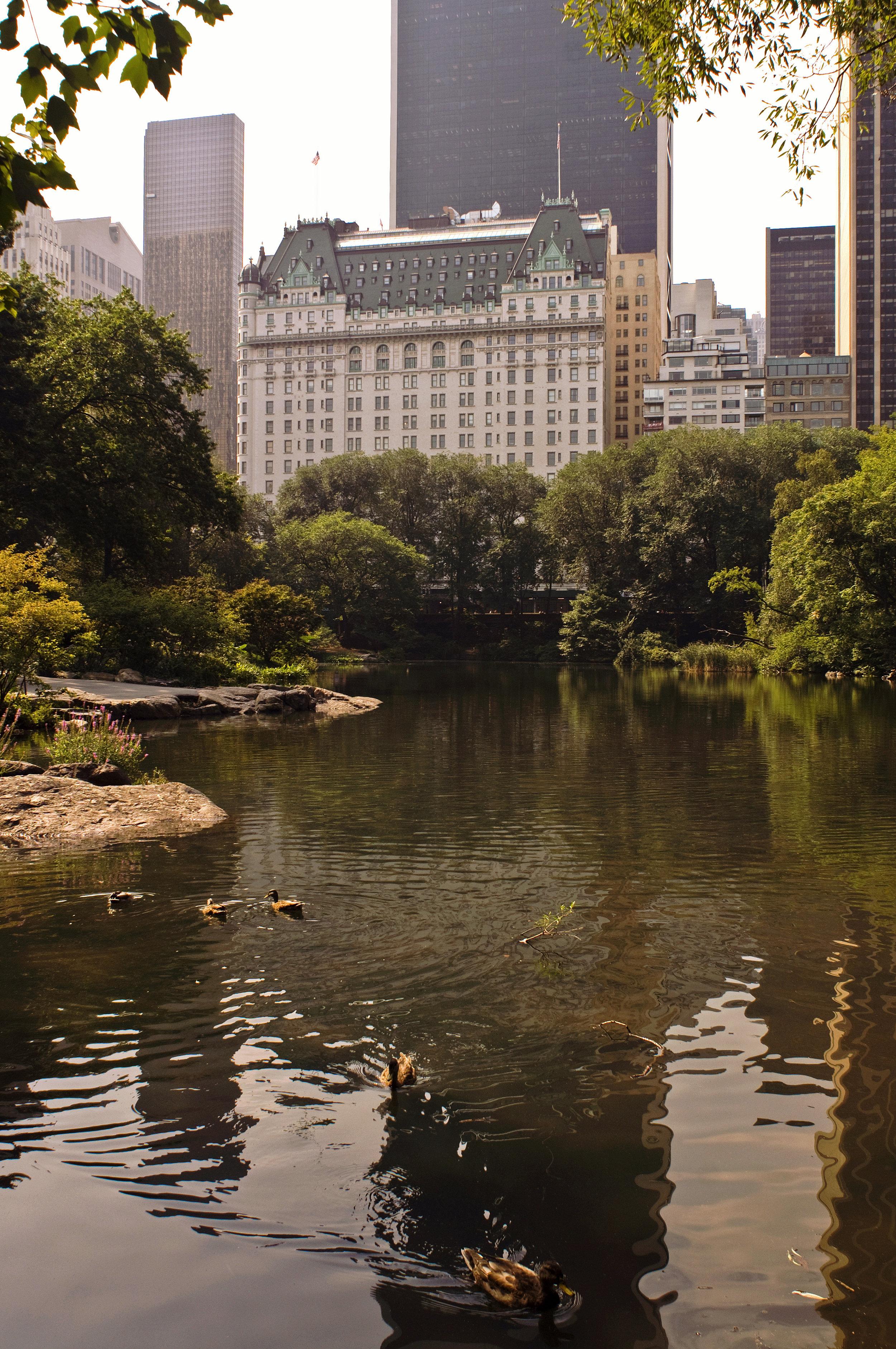 Plaza Hotel 01.jpg