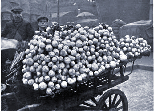 With potatoes, flour and vegetable virtually gone, German families subsisted on turnips.