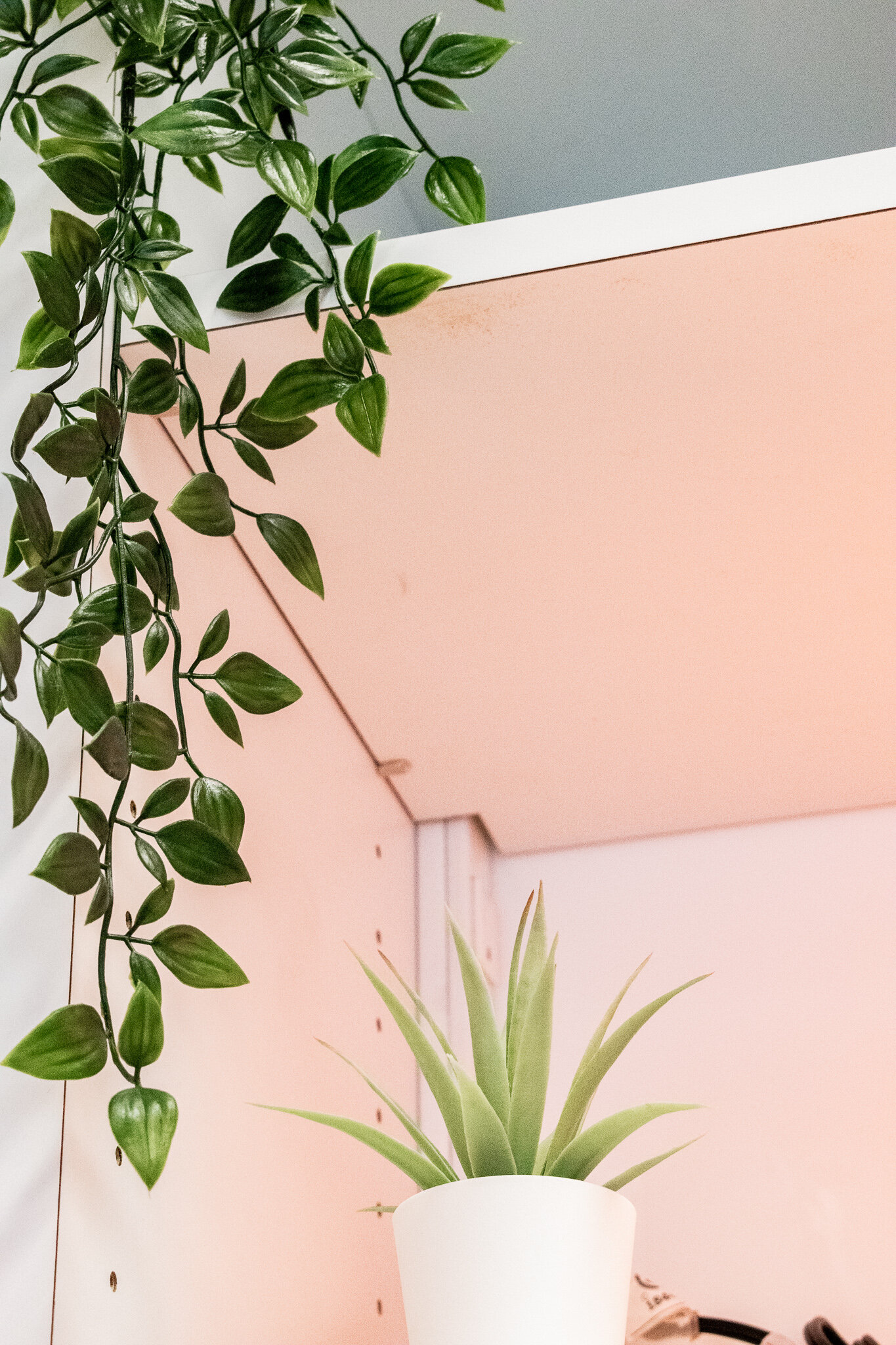 Lobby Plants 2.jpg