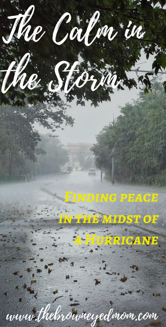 The-Calm-in-the-Storm-e1508877437804.png