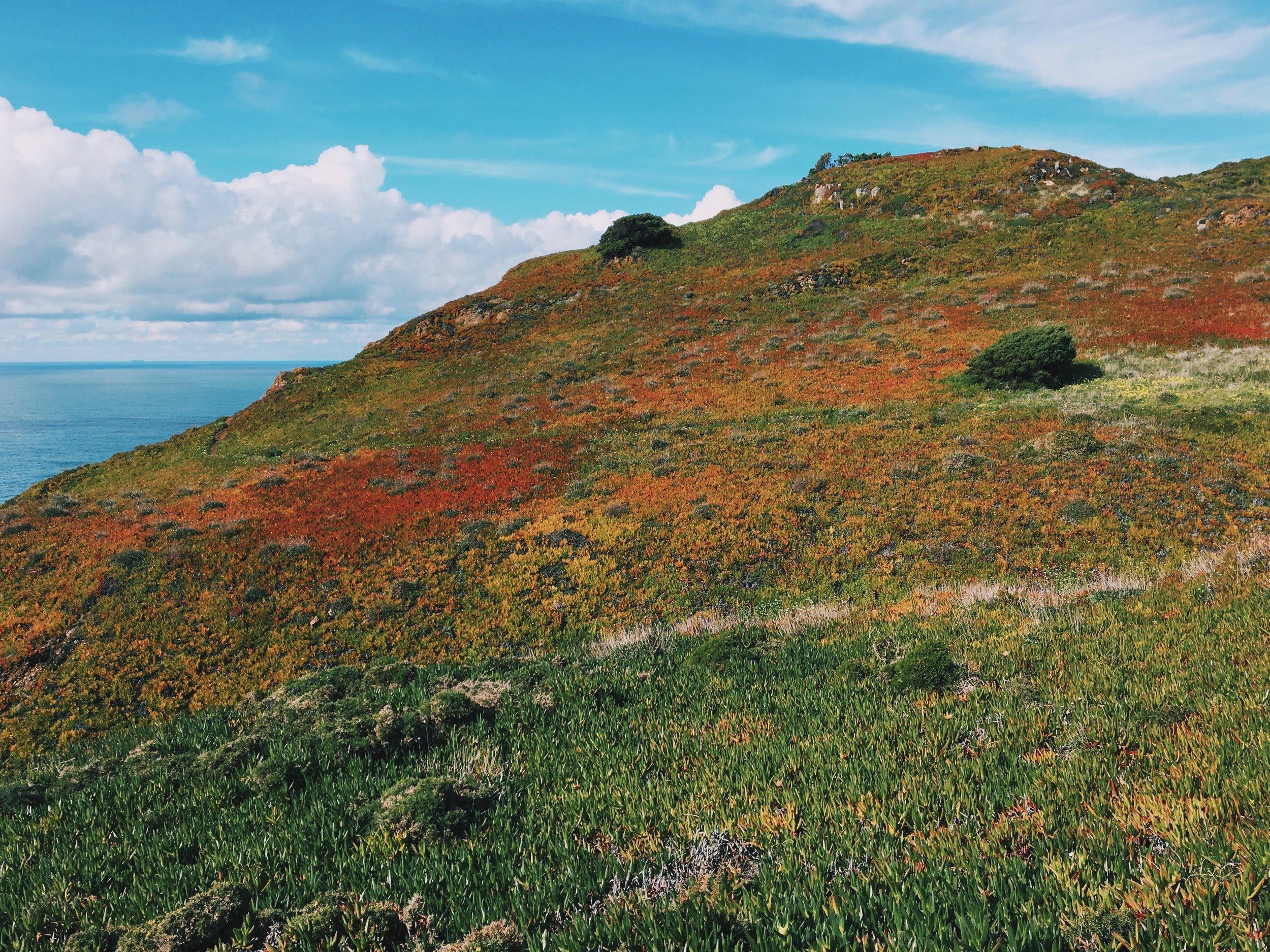 The colorful cliffs around Cabo da Roca.