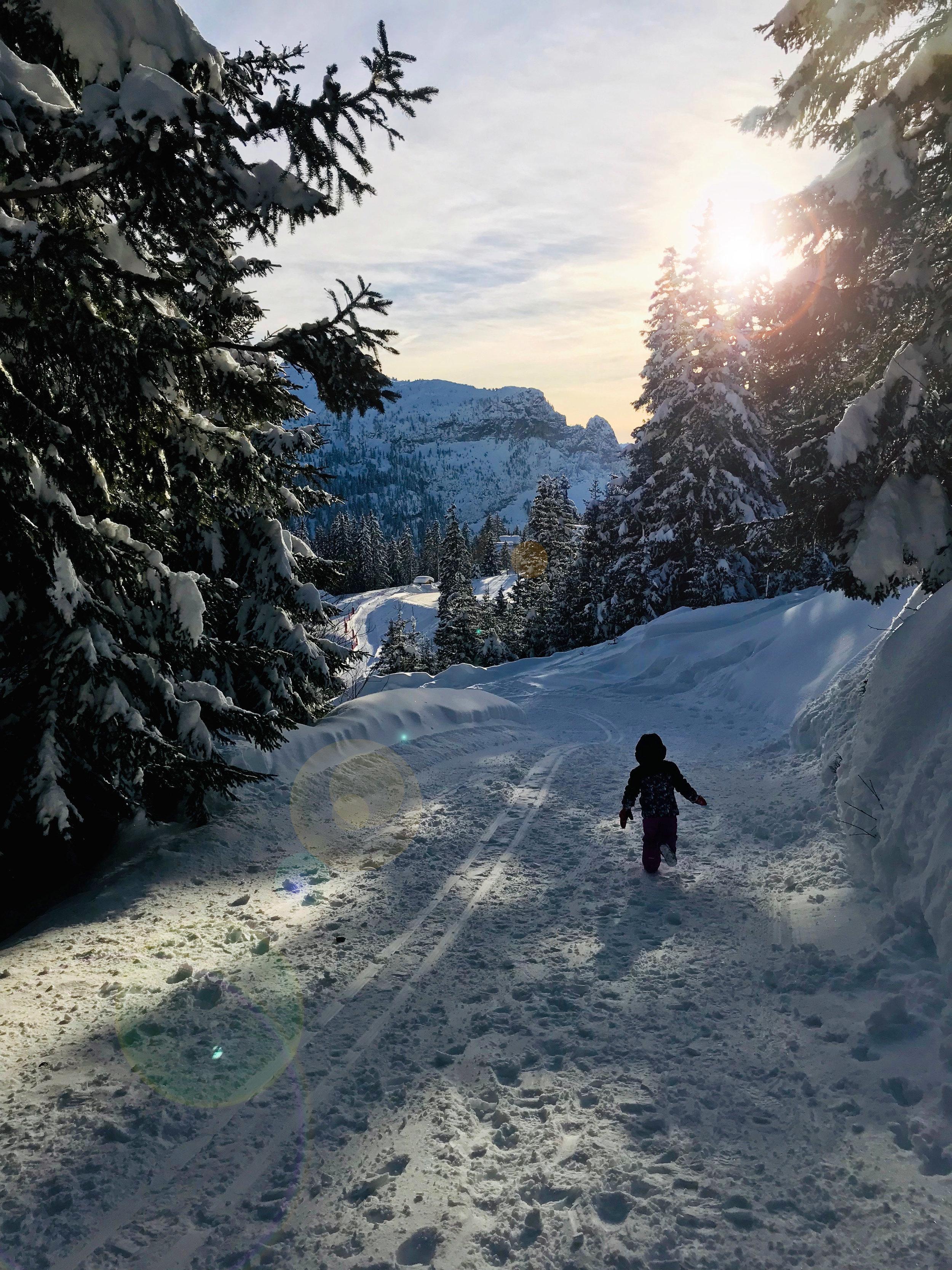 Annabel in the snow lens flare.jpg