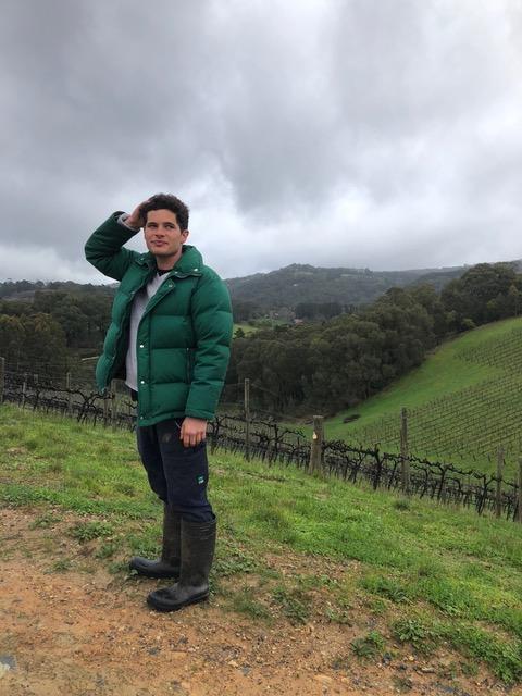 Basket Range Wine    SEE MORE