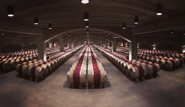 The Barrel Room at the Legendary Robert Mondavi winery in Oakville. - - #tmbwinetrading #tmbwine #robertmondavi #robertmondaviwinery #napavalleywine #napavalley #californianwine #finewine #instawine