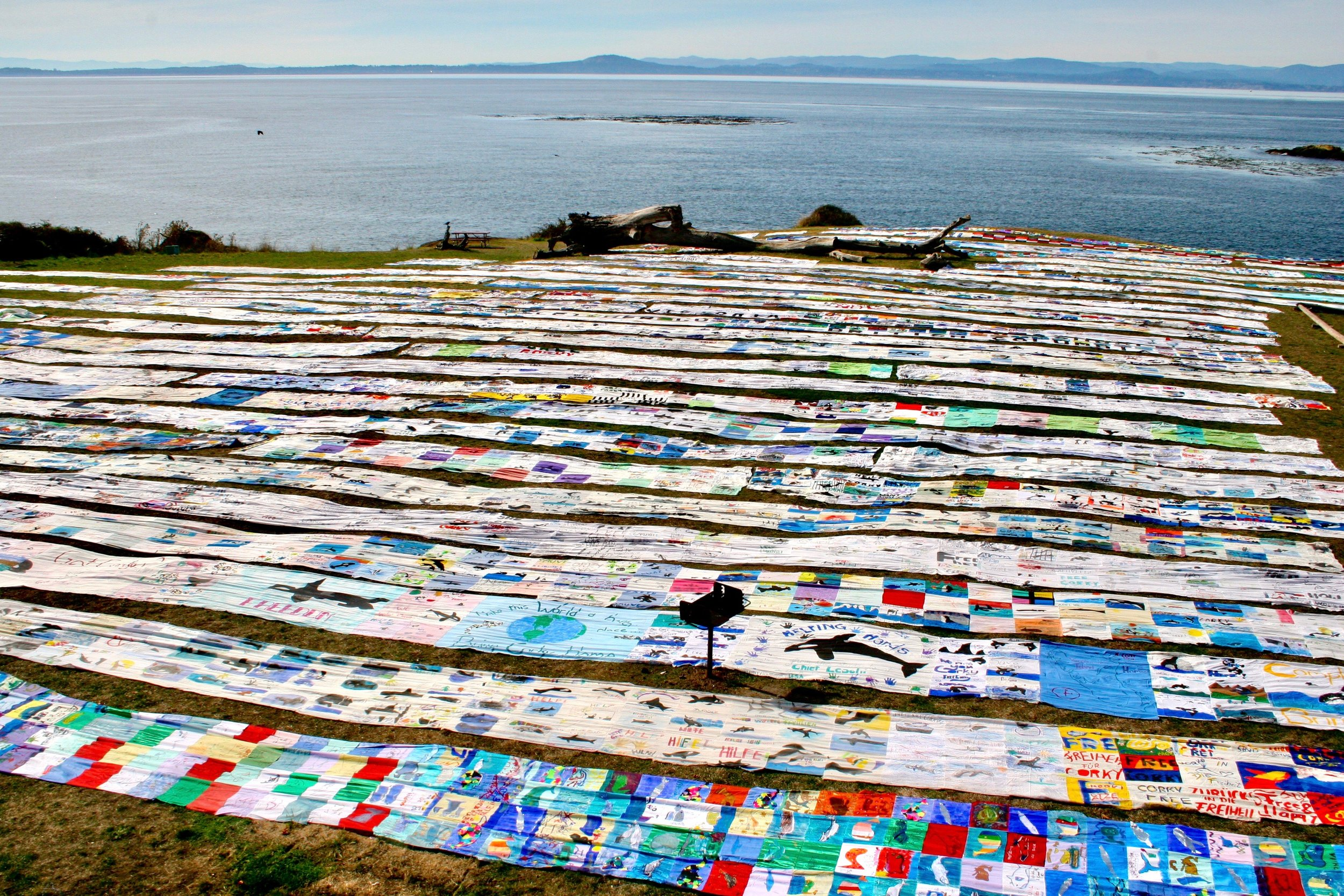 The entire Corky Freedom Banner laid out at San Juan County Park, San Juan Island, Washington State.