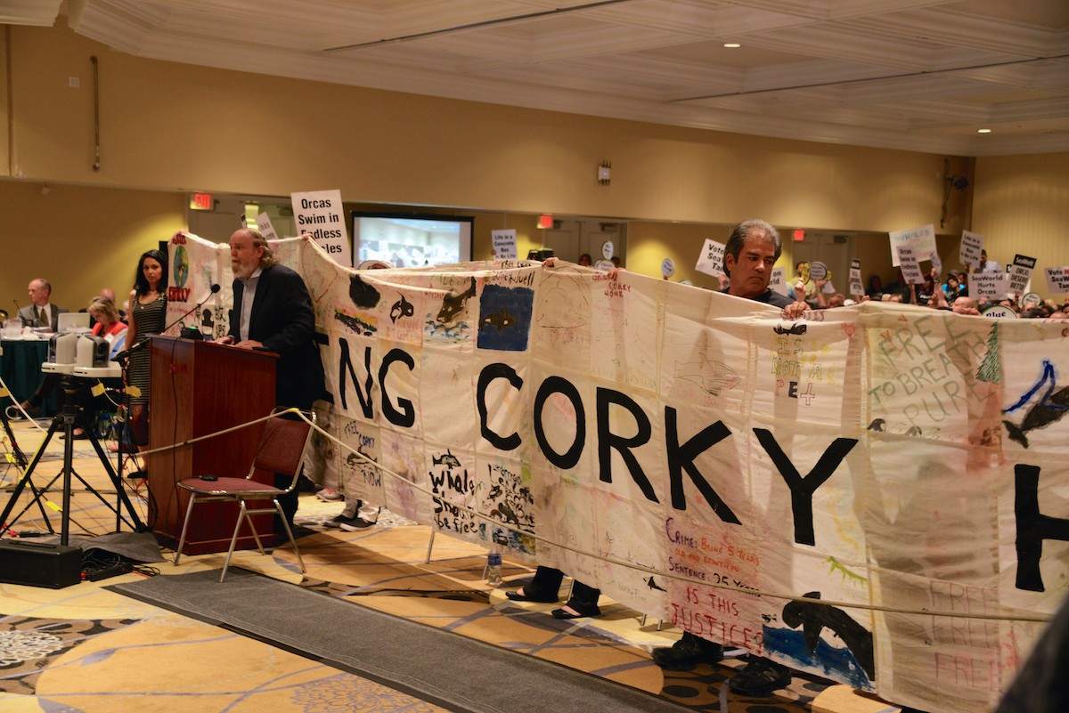 Mark Palmer addresses California Coastal Commission with Corky Banner, October 2015.