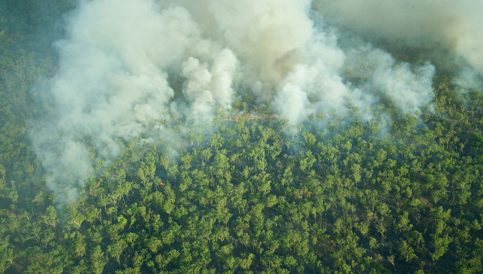 bigstock-Aerial-View-Of-A-Bushfire-In-K-92950595-WEB.jpg