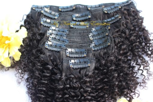 Source: https://www.mynaturalhairextensions.com/product/coily-clip-ins/