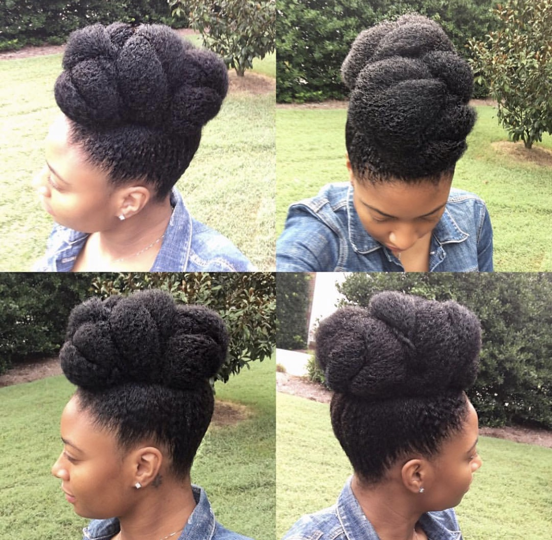 2019 Elegant Hair Styles For Natural Hair Haircrush