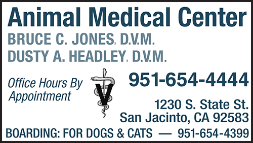 animal med center1.jpg