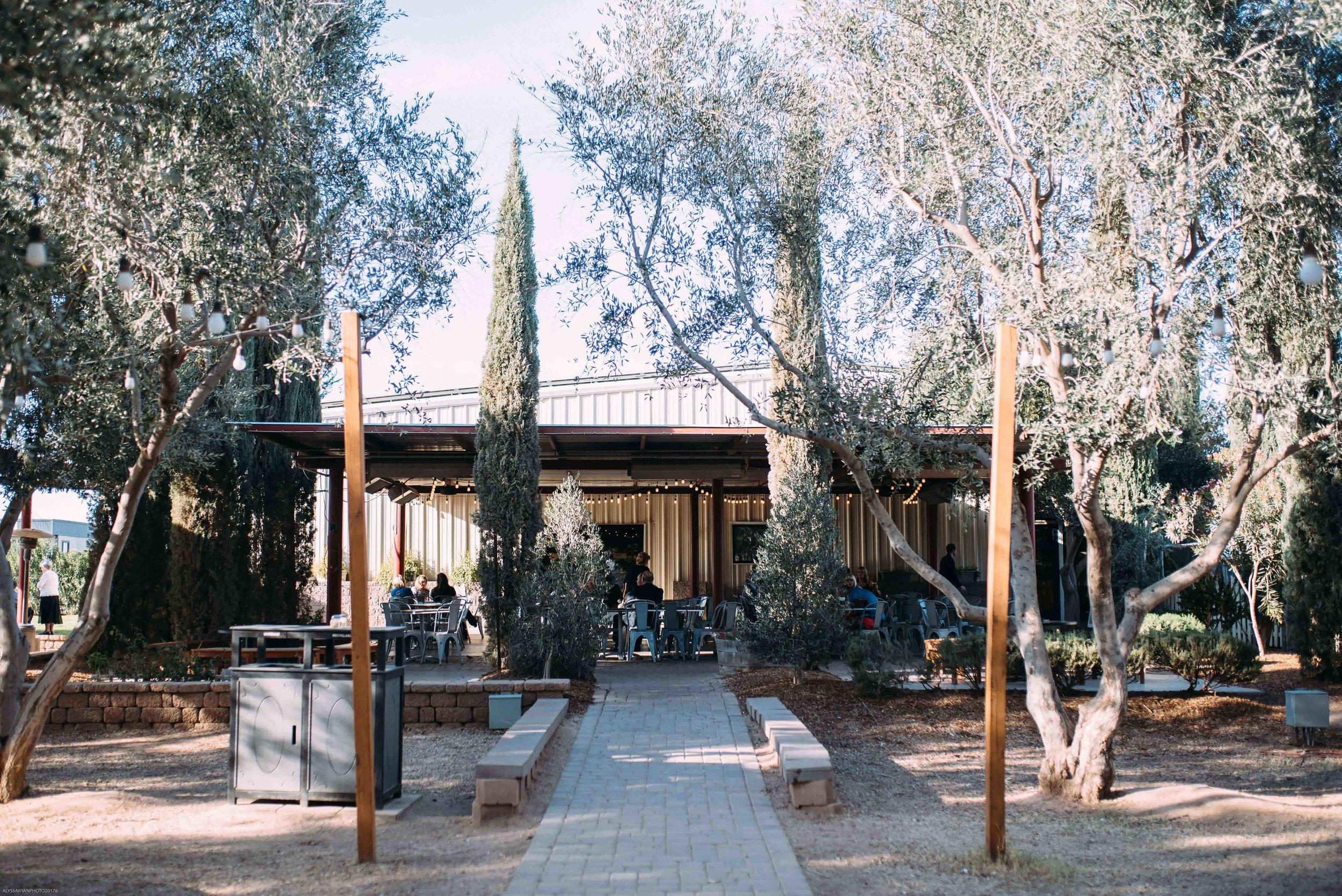 Queen Creek Olive Mill Arizona Wedding_Alyssa Ryan Photography2.jpg