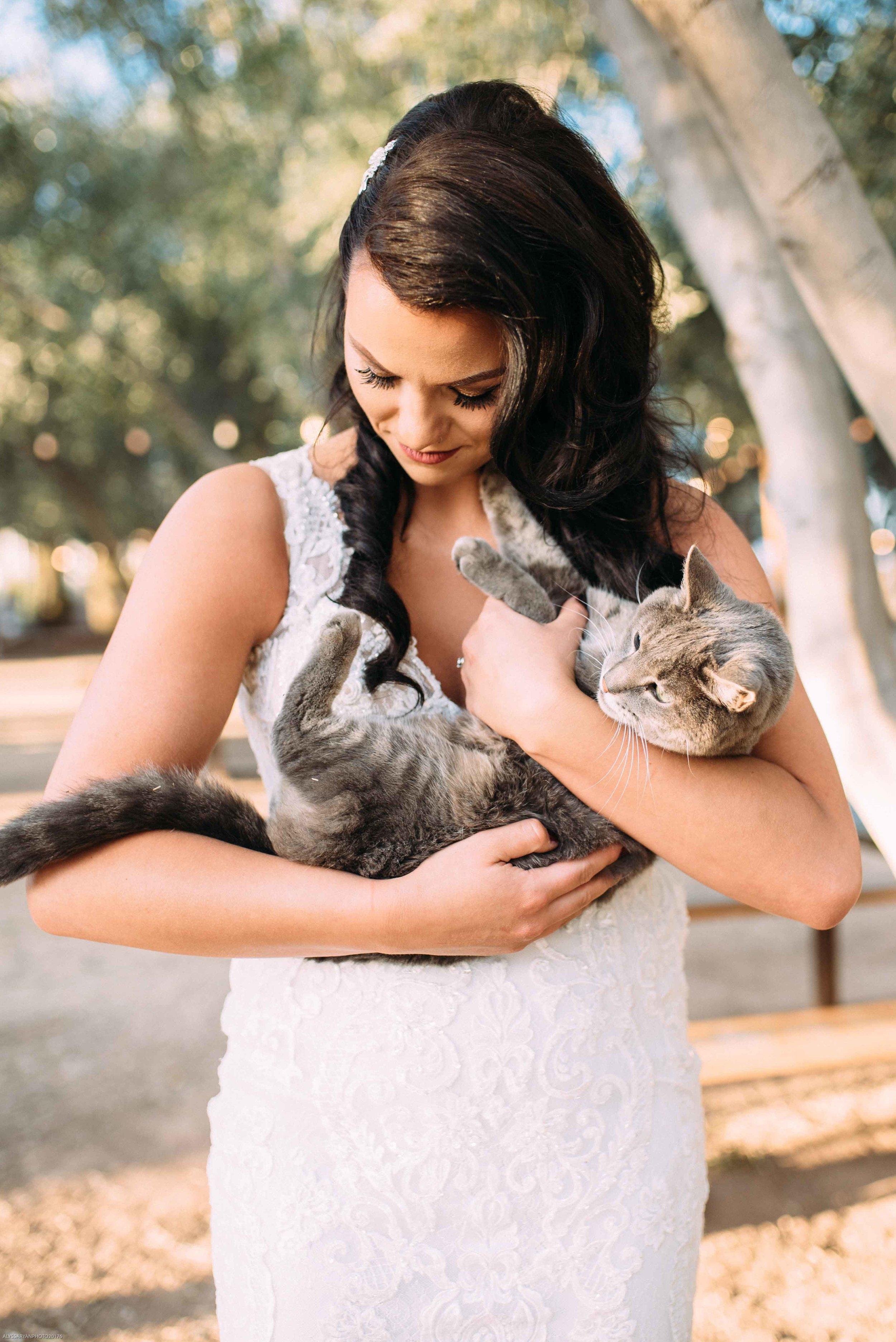 Queen Creek Olive Mill Arizona Wedding_Alyssa Ryan Photography37.jpg