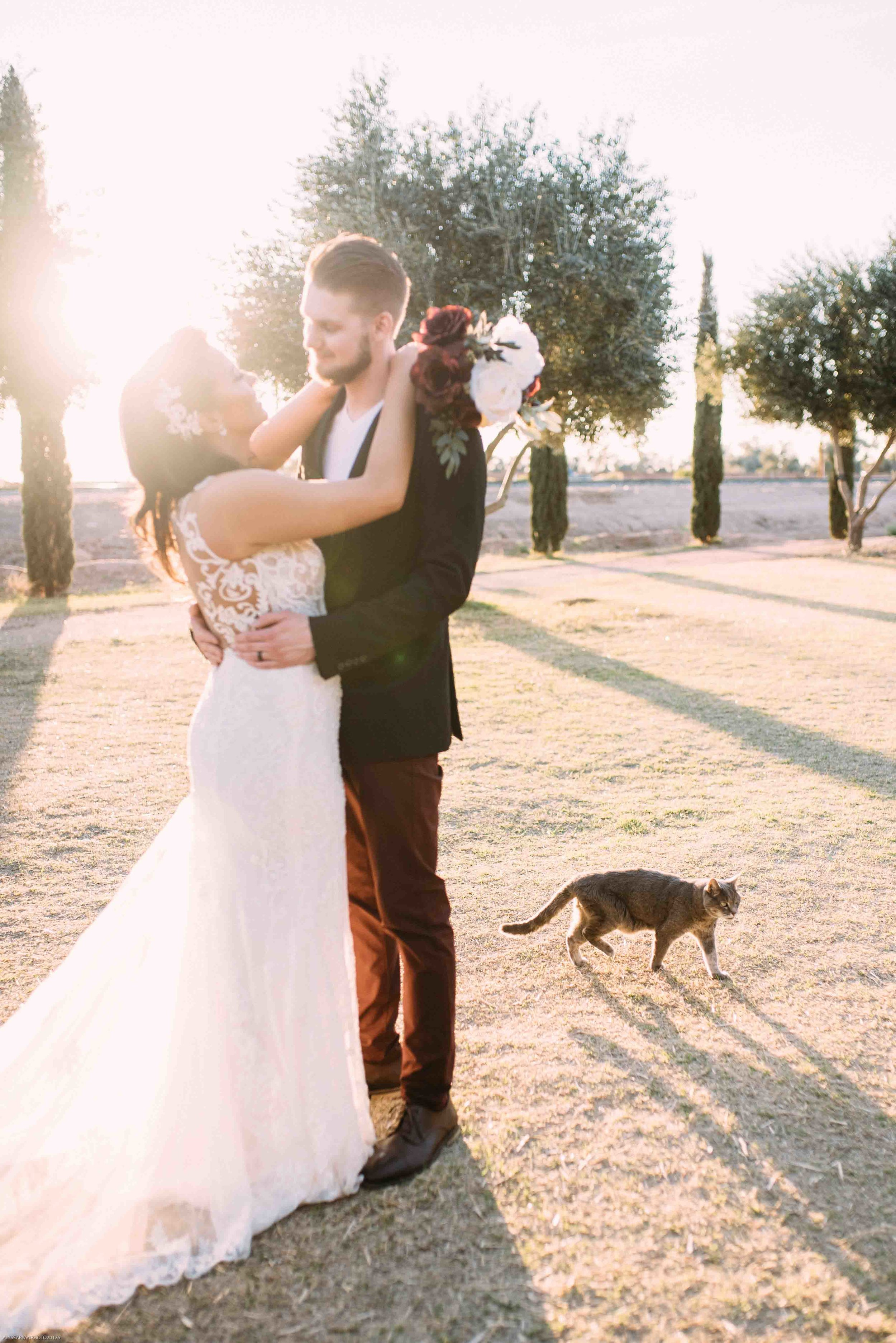 Queen Creek Olive Mill Arizona Wedding_Alyssa Ryan Photography42.jpg