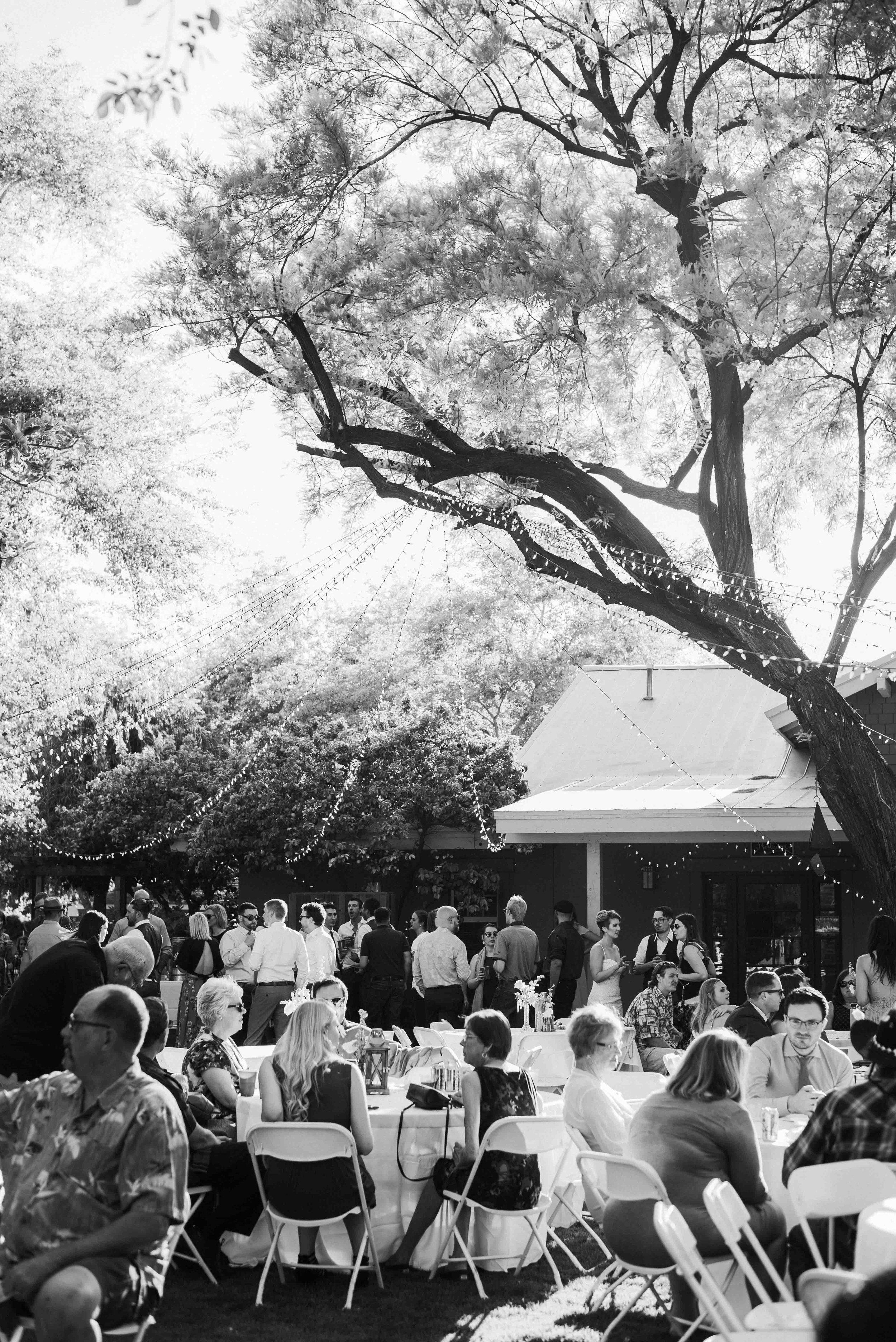 Phoenix_Arizona_Wedding_Blog_AlyssaRyanPhotography48.jpg