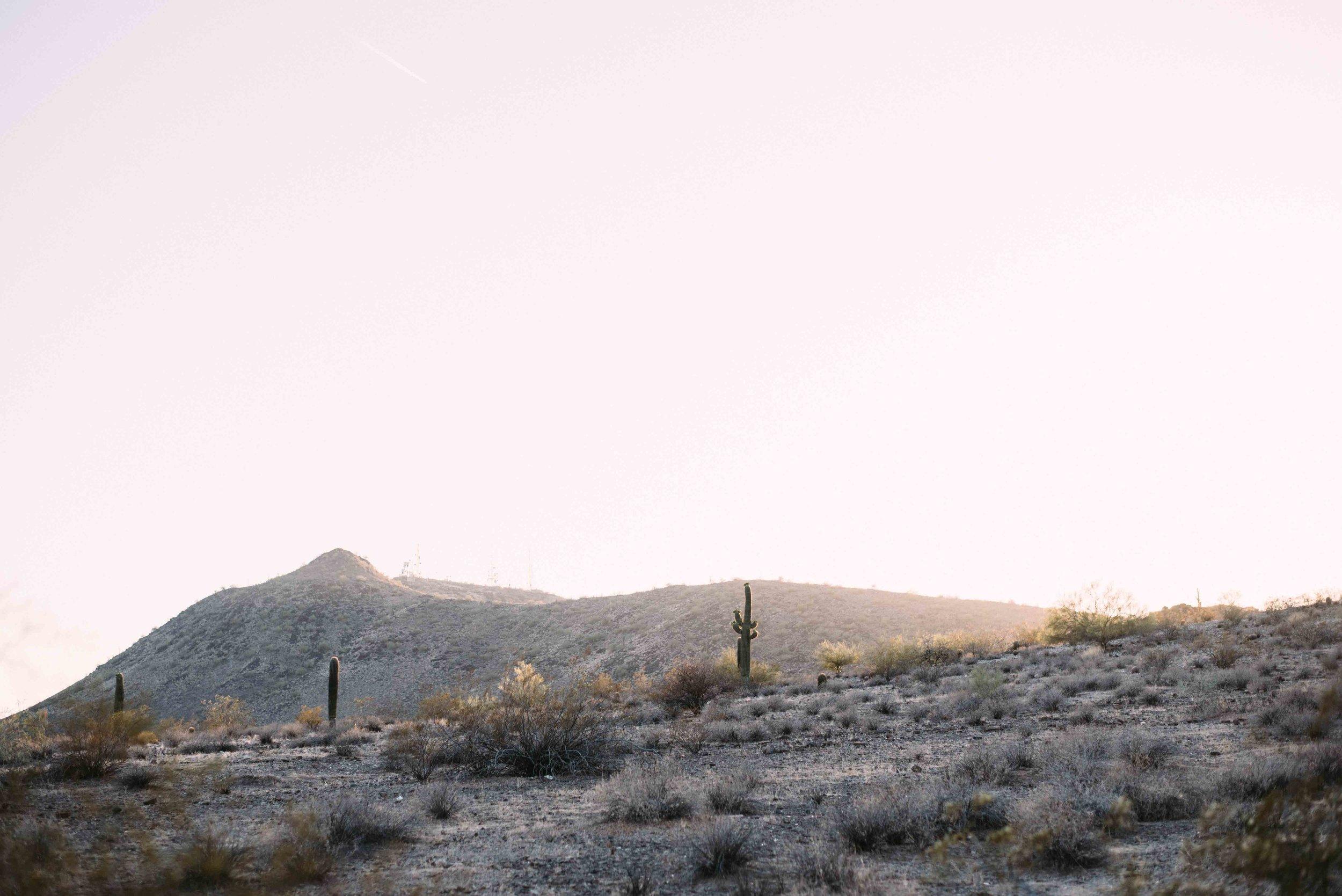 Phoenix_Arizona_Wedding_Blog_AlyssaRyanPhotography72.jpg