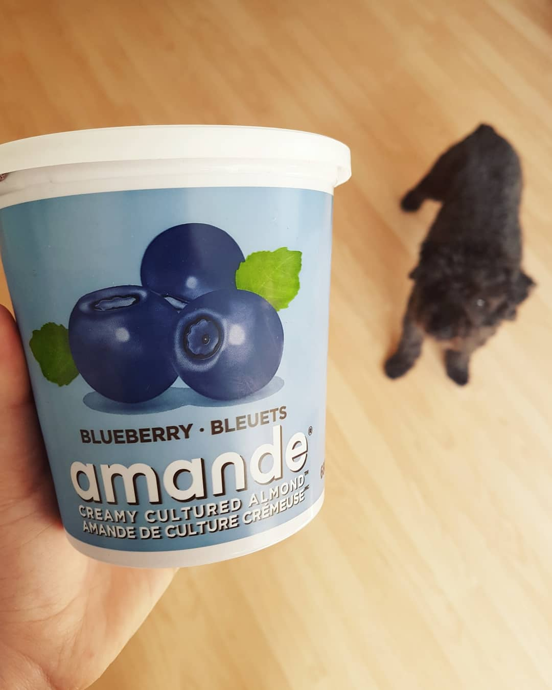 Amande - Blueberry