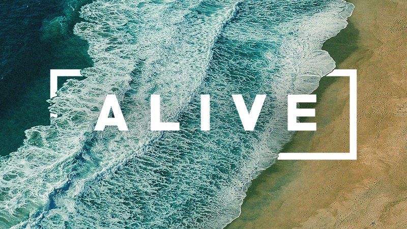 alive-side-screen-800x450.jpg