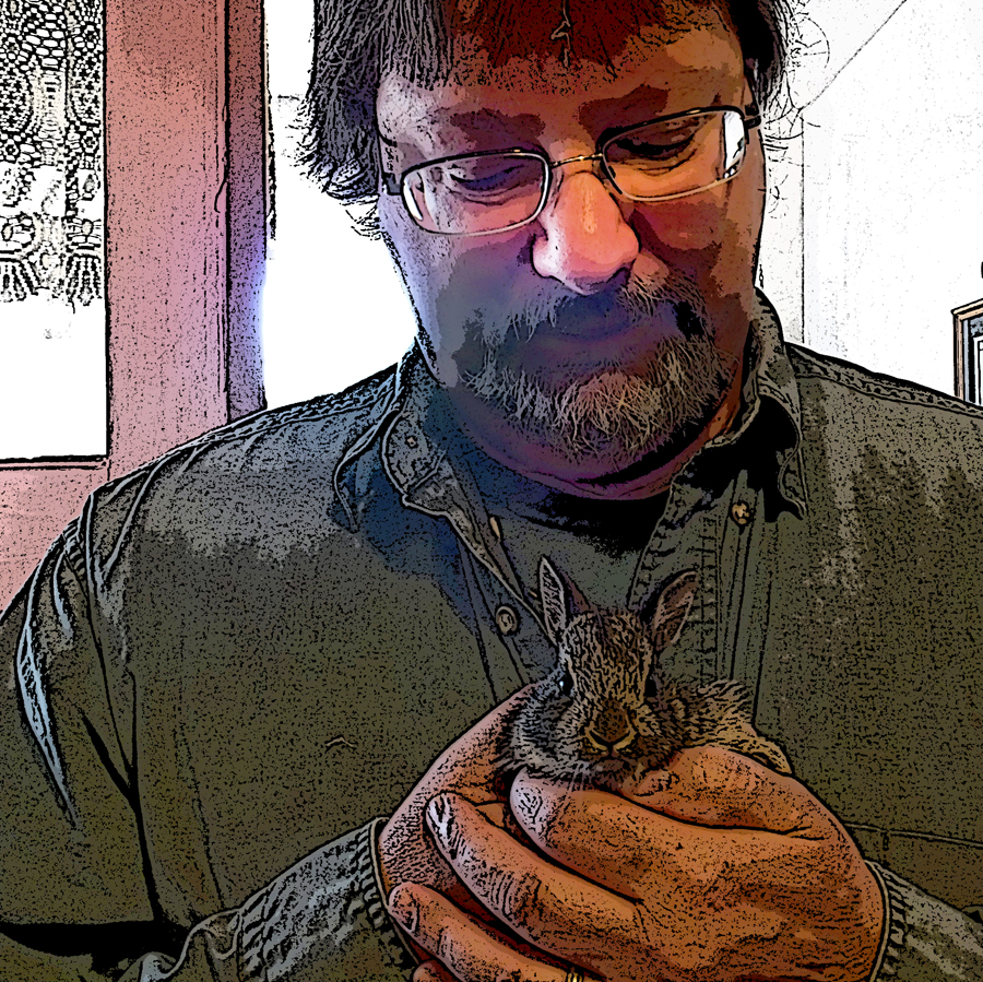 This is Steve with a baby bunny. Yes, this is a shameless ploy (Steve, tenderly holding a baby bunny, he would be a good person to do your editing or design dontcha think?). The bunny was released unharmed back into the yard after the photo was taken.