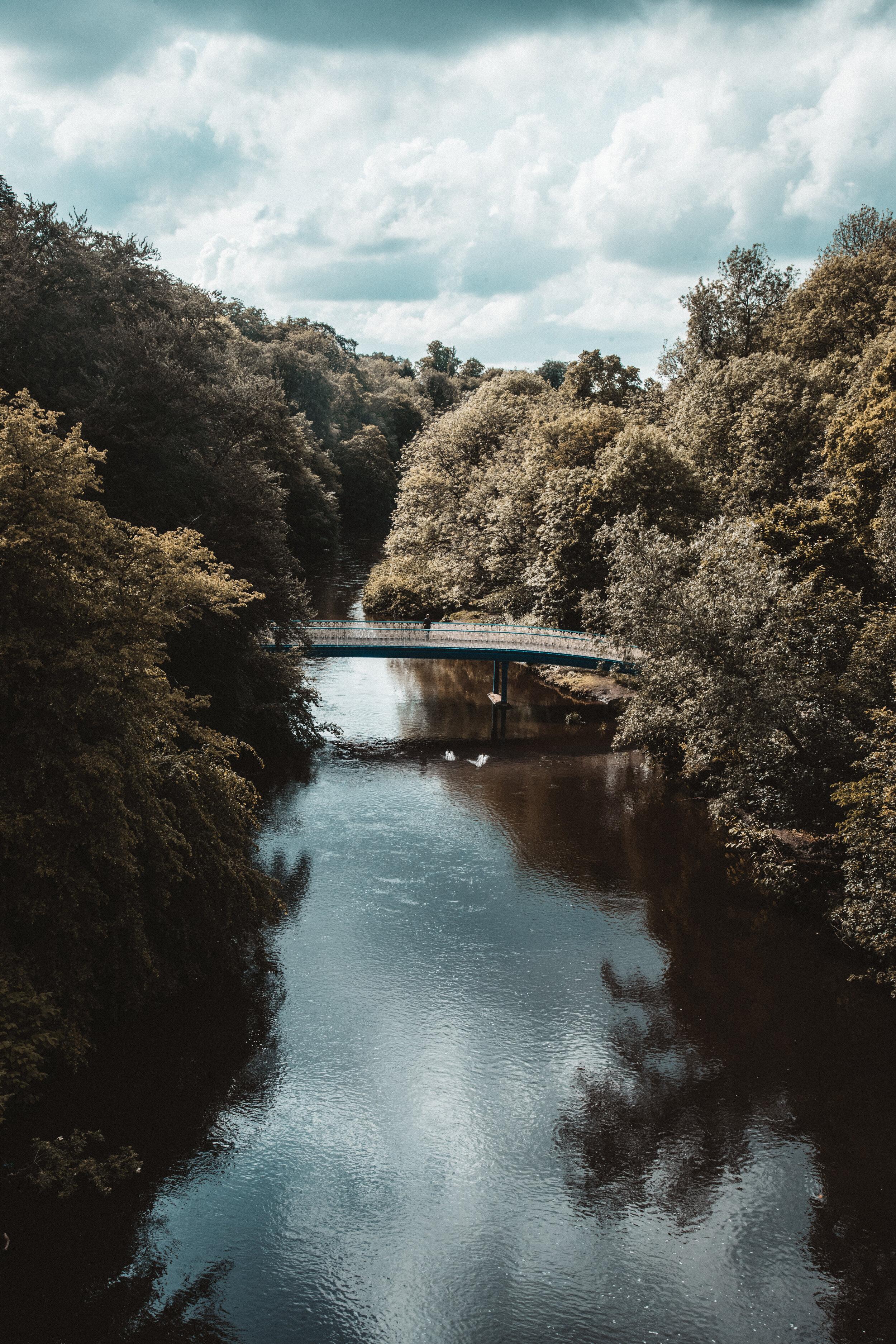 Botanical Garden in Glasgow