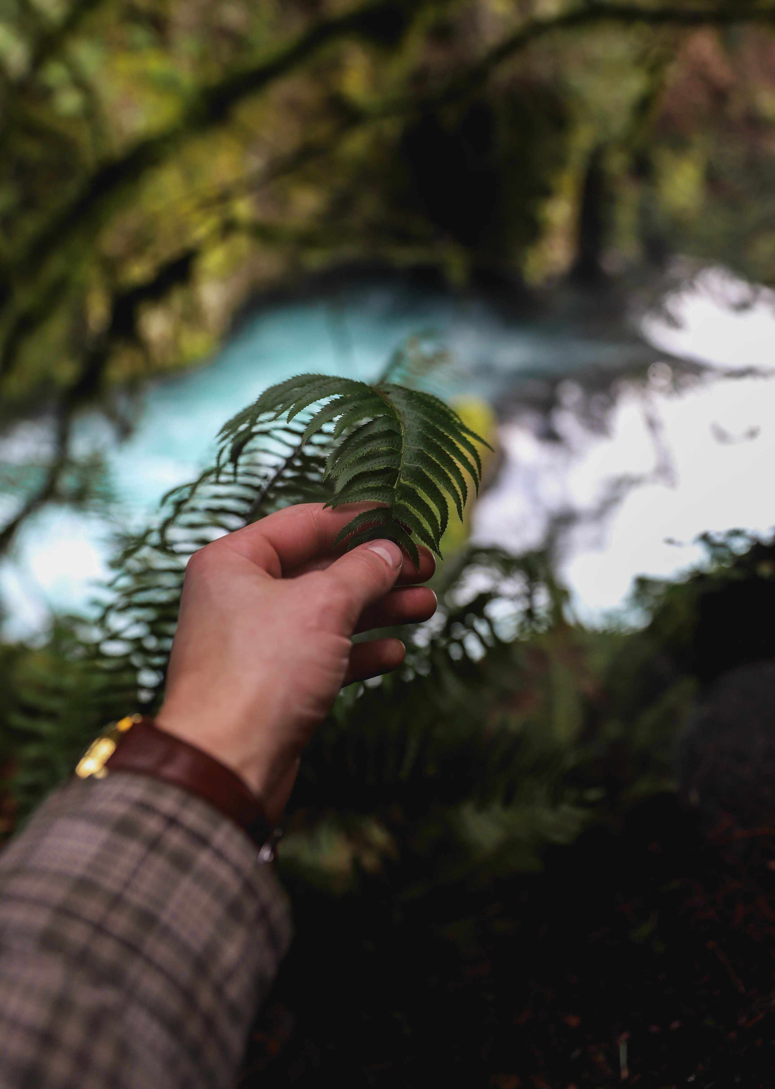 Some Waterfall tests-3.jpg