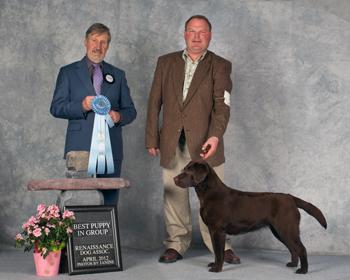 Tazzy best puppy 2012 (1).jpg