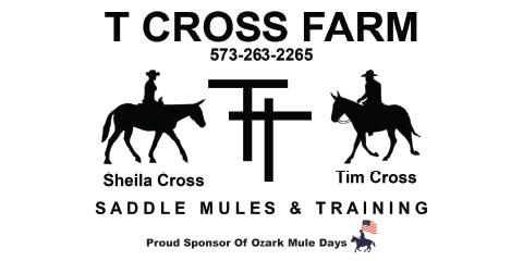 210 mule 2x4 banners-1.jpg