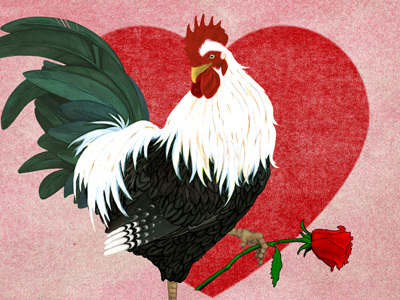 Chicken Art Reviews - Kind words from wonderful people.