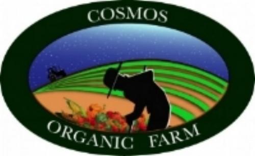 Cosmos Organic Farm Carrollton Georgia CSA Community supported agriculture