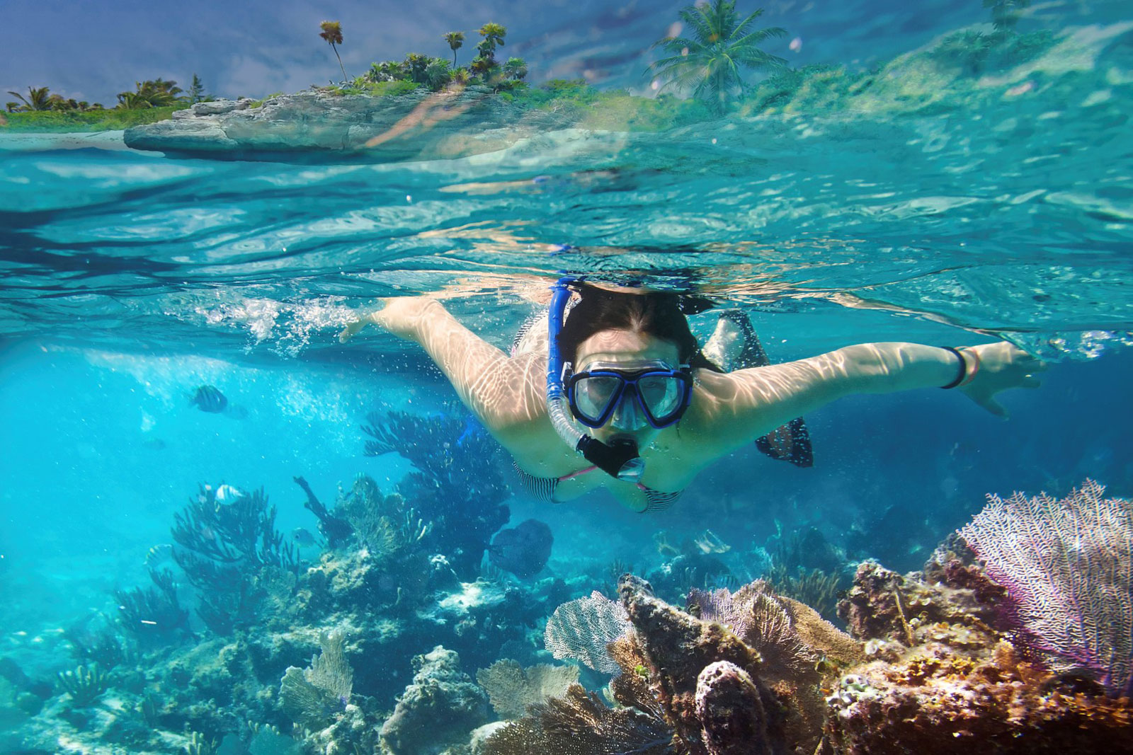 riviera-maya-snorkeling-01.jpg