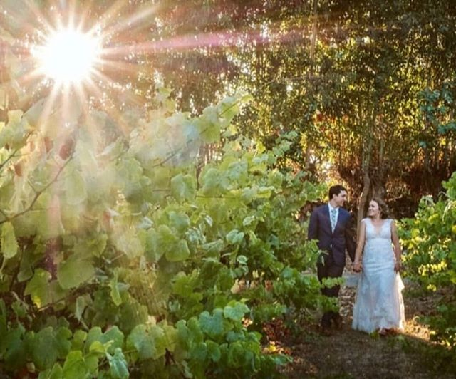 Im still obsessing over @the_holly_farm wedding location. I was transported to Hawaii, but was in Carmel Valley. Wedding bliss captured 💕  @ericjames.photography  @the_holly_farm  @moses_erin  @laughingalfloral  @lacrememonterey @sarahbridalbeauty @kinsleyjamescouturebridal @jmk1011 @m_omick  #hollyfarm #kinsleyjamesbridal #sarahbridalbeauty #weddinghair #bridalhair #bridalbeauty #sayido #happilymauied