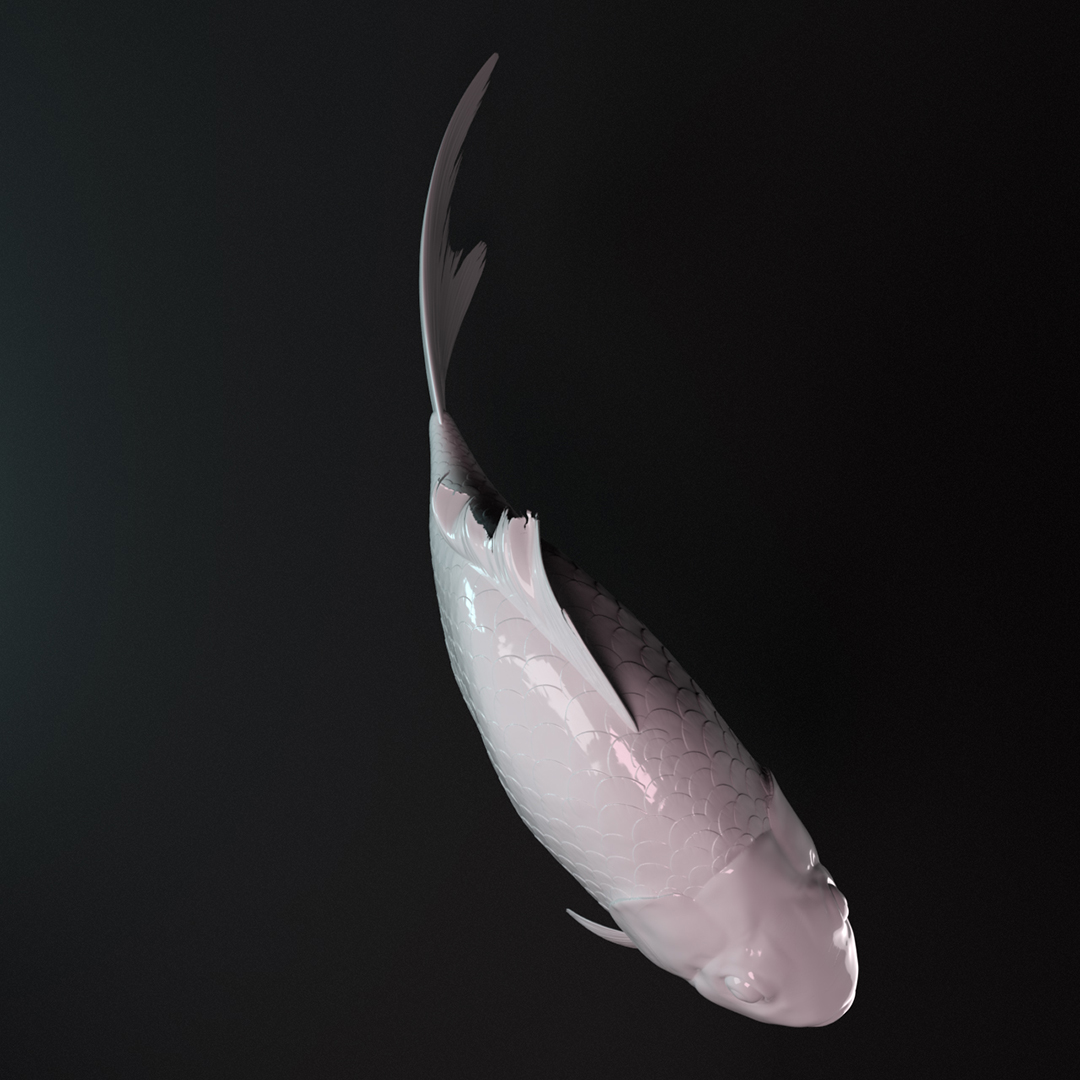 Fish_01j.jpg