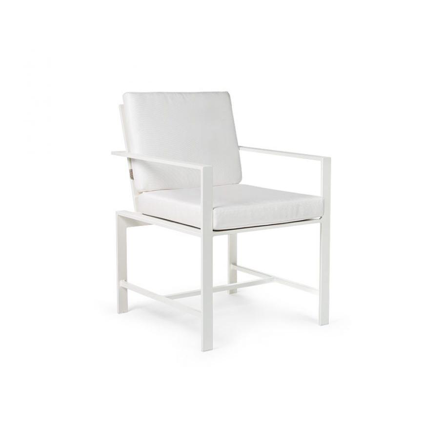 Dining Arm Chair  copy.jpg