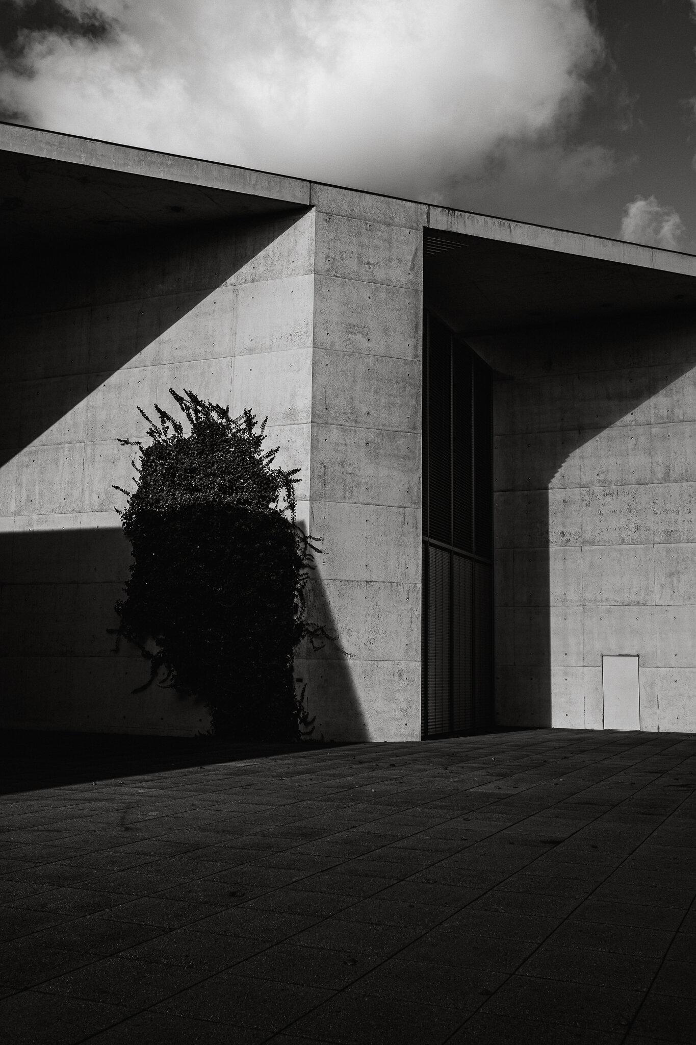 Bonn Kunstmuseum, Oliver Döll , Oliver Döll Fotograf , Oliver Döll Andernach , Fotograf aus Andernach , Fotograf Andernach , Fotograf in Andernach , Andernach Fotograf , Fotografie