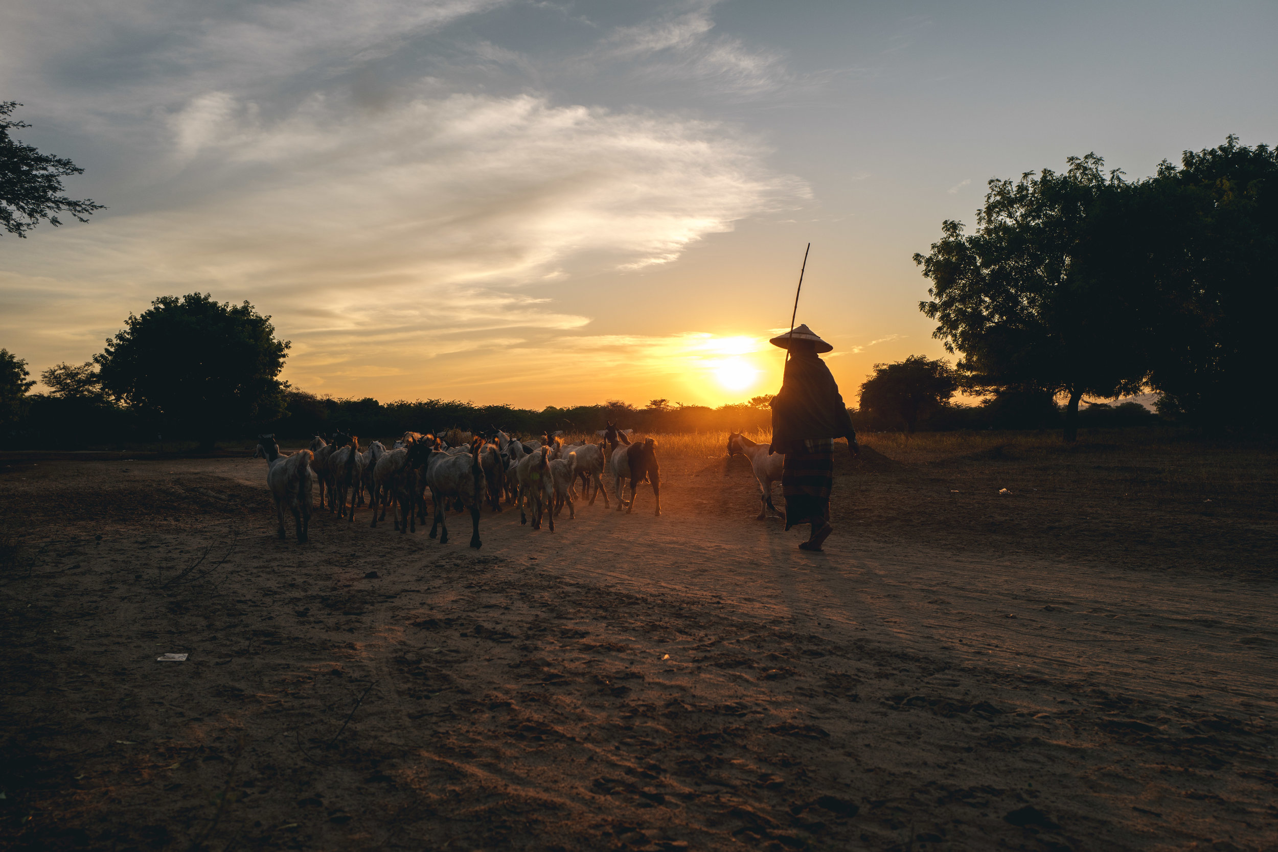 19/20 - Sonnenuntergang in Bagan